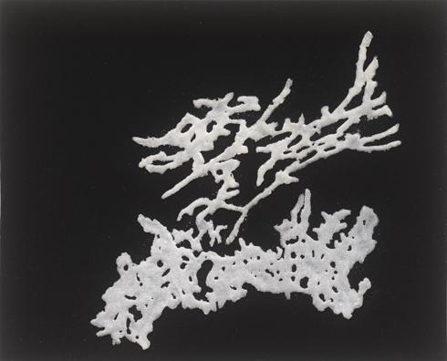 """ללא כותרת, 2012, אבקת סודה לשתיה, דבק, טפט קטיפה שחור, 26 x 20 ס""""מ"""