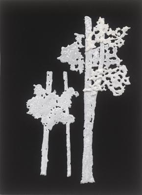 """ללא כותרת, 2012, אבקת סודה לשתיה, דבק, טפט קטיפה שחור, 23 x 31 ס""""מ"""