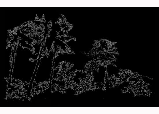 """ללא כותרת, 2010, הדפסה דיגיטלית על פילם בתוך קופסת אור, 100 x 50 ס""""מ"""