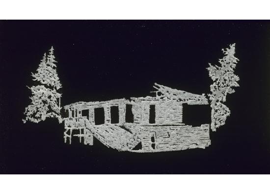"""קתרינה, 2010, מלח, דבק, אקריליק על פרספקס, 54 x 30 ס""""מ"""