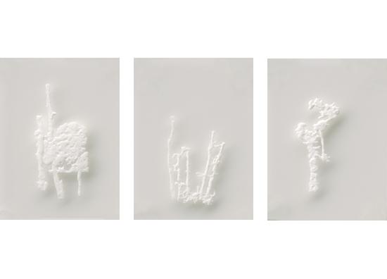 """ללא כותרת, 2010, אבקת סודה לשתיה, דבק, פרספקס, 20 x 25 ס""""מ כל אחד"""