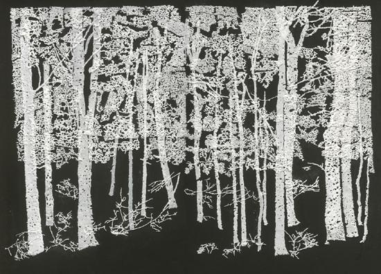 ללא כותרת, 2010, MDF, עץ לבוד, אבקת סודה לשתיה, דבק, צבע, 160 x 120
