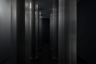 Colonnade, 2013-2014, nylon string, plastic, light, installation view