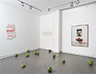 Installation view, March-May, 2107